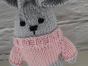 Small teddy in pink jumper.
