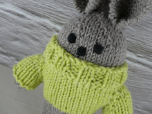 Load image into Gallery viewer, Small teddy in green jumper.
