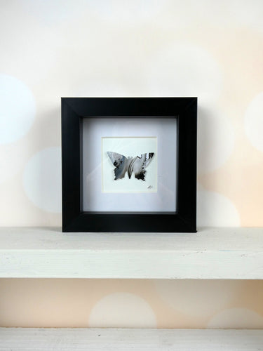 One framed butterfly (Black and Silver)