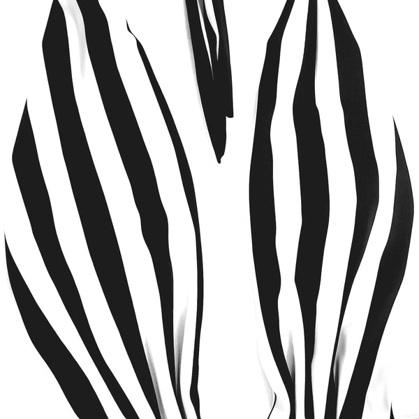 Zebra One piece Swimsuit