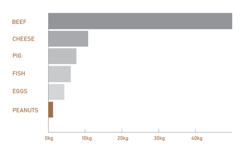Graph comparing greenhouse gas emissions per 100 grams of protein