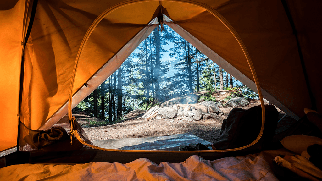View-From-Tent-At-Campsite-Filled-With-Trees