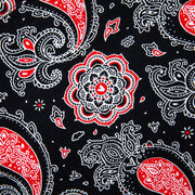 VAST Paisley Shirt - RED MULTI