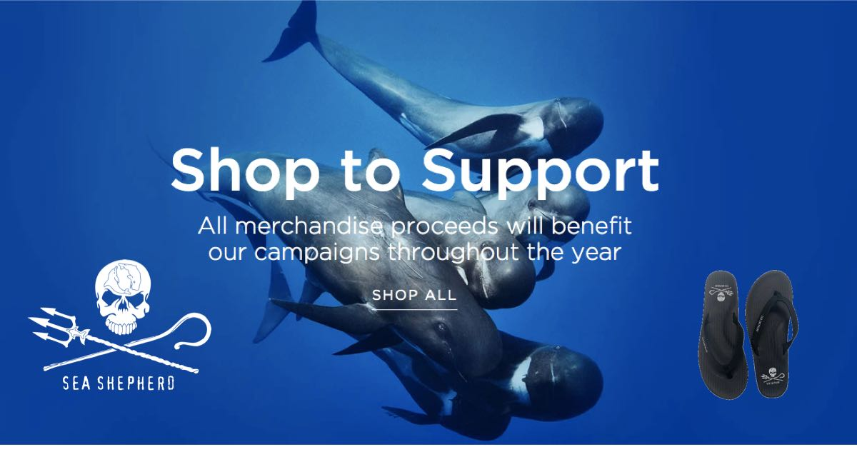 Buy Sea Shepherd X Indosole Flip Flops Online to help Raise Funds to Support Sea Shepherd
