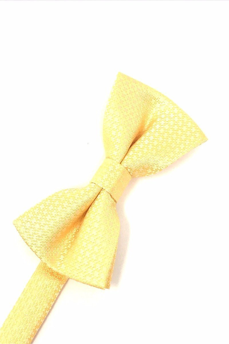 Harvest Maize Regal Bow Tie
