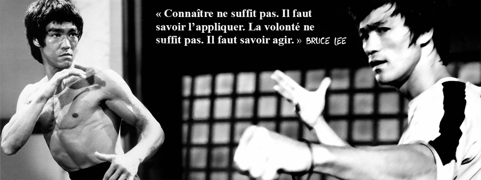 Bruce Lee citation