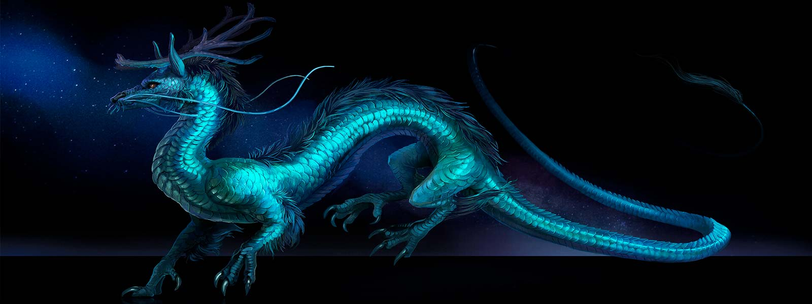 Chinese dragon body