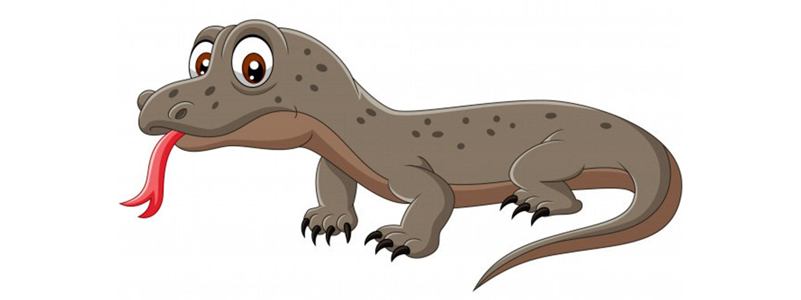 Komodo dragon drawing