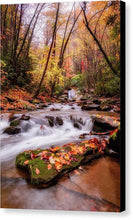 Load image into Gallery viewer, Autumn Glow - Canvas Print