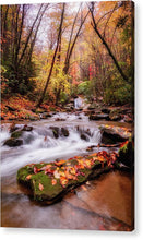 Load image into Gallery viewer, Autumn Glow - Acrylic Print