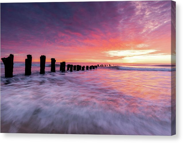 Carolina Dreaming - Canvas Print