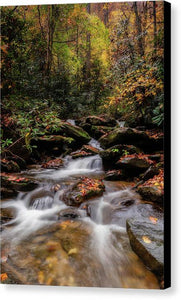 Chestnut Branch Creek - Canvas Print