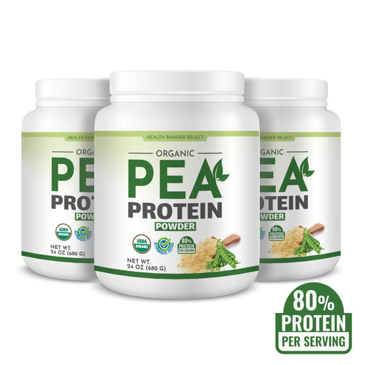 Organic Pea Protein Powder 24 oz (680g) (3-Pack)