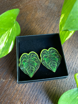 Botanicalist Leaf Stud Earrings, Wood