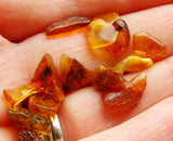 Baltic Amber Tumbled Nuggets/Chips