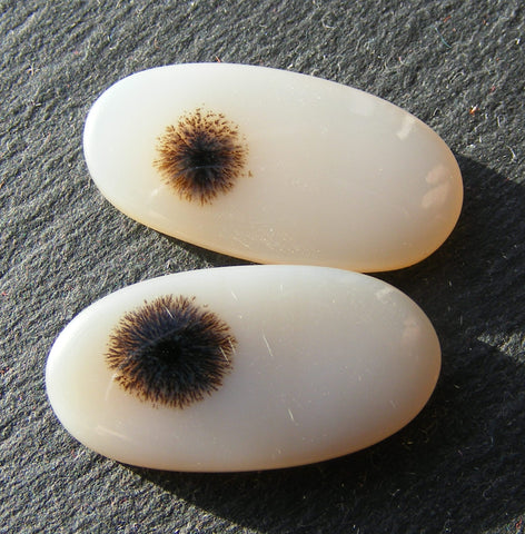 Scenic Dendritic Agate Oval Cabs - Pair