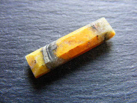 Bumble Bee Jasper Rectangular Cab