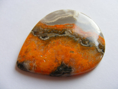 Bumble Bee Jasper Pear Cab