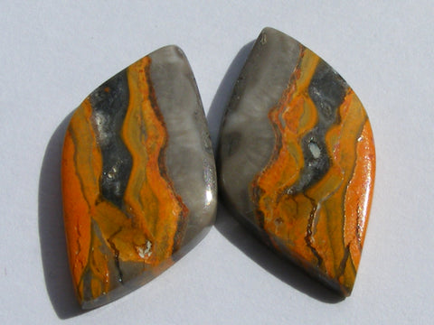 Bumble Bee Jasper Fancy Cabs - Pair