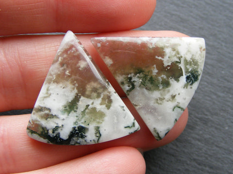 Tree Agate Triangular Cabs - Pair
