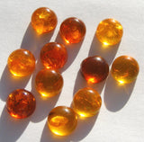 Vintage Baltic Amber Round Cabochon
