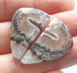 Crazy Lace Agate Fancy Cabs - Matching Pair
