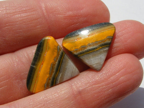 Bumble Bee Jasper Triangular Cabs - Matching Pair