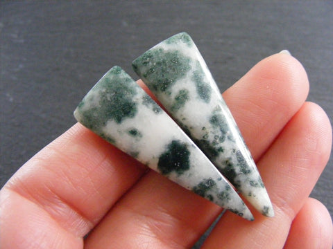 Tree Agate Triangular Cabs - Matching Pair