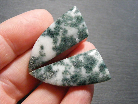 Tree Agate Fancy Cabs - Matching Pair