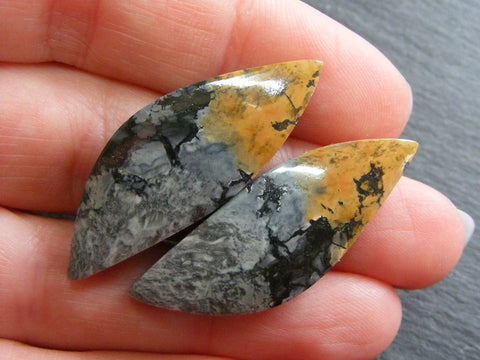 Maligano Picture Jasper Fancy Cabs - Matching Pair