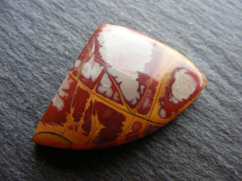 Noreena Jasper Fancy Cab
