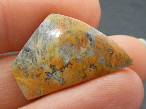 Maligano Picture Jasper Fancy Cab