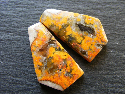 Bumble Bee Jasper Fancy Cabs - Matching Pair