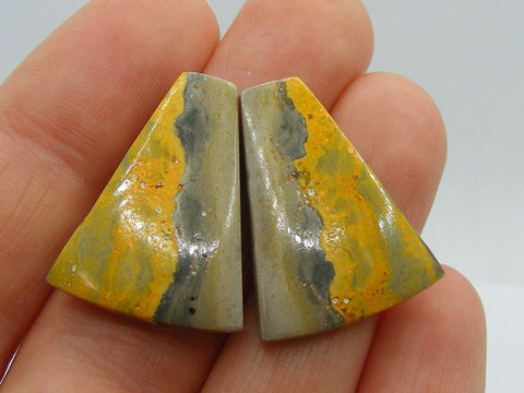 Bumble Bee Jasper Fancy Taper Cabs - Matching Pair