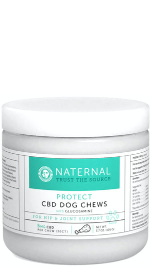CBD Oil for Pets & More