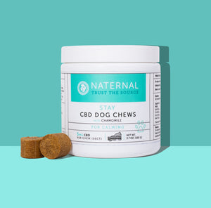 Stay CBD Dog Chews for Calming