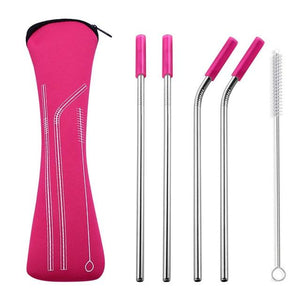 Stainless Steel Straw Set With Silicone Tips And Case