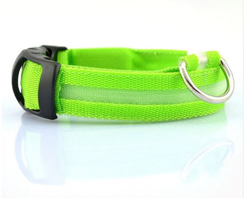 Collar To Keep Your Dog Visible in The Dark