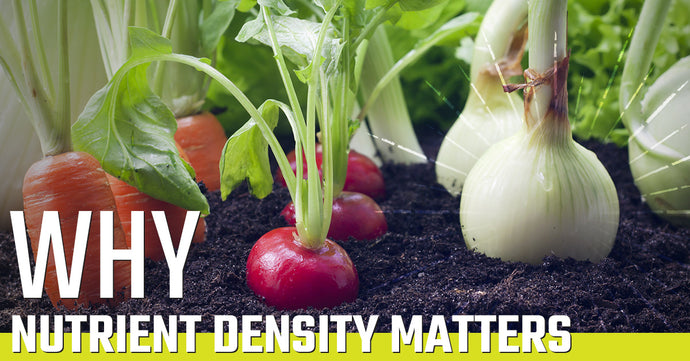 Why Nutrient Density Matters