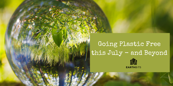plastic free july guide