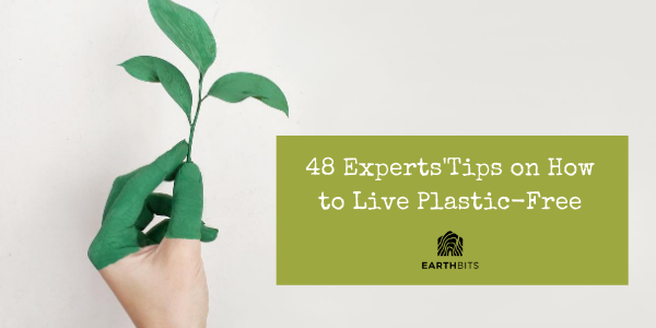 experts tips to go plastic free