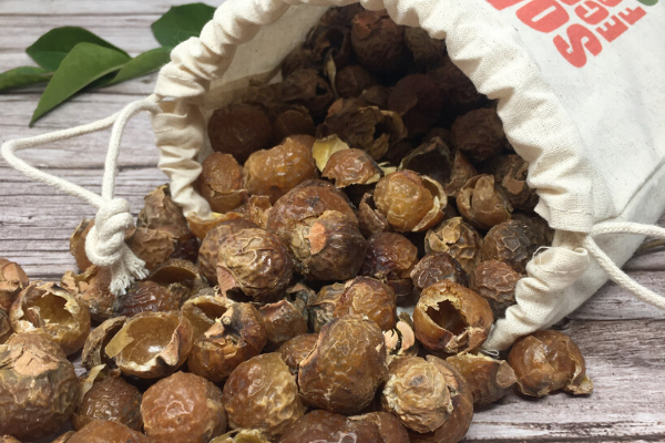 what are soapnuts and how to use them
