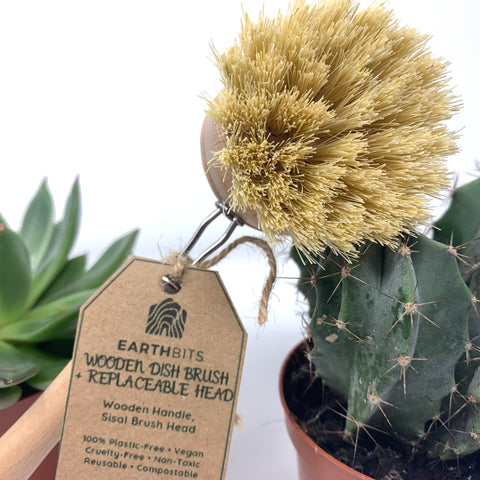 plastic free kitchen dish brush