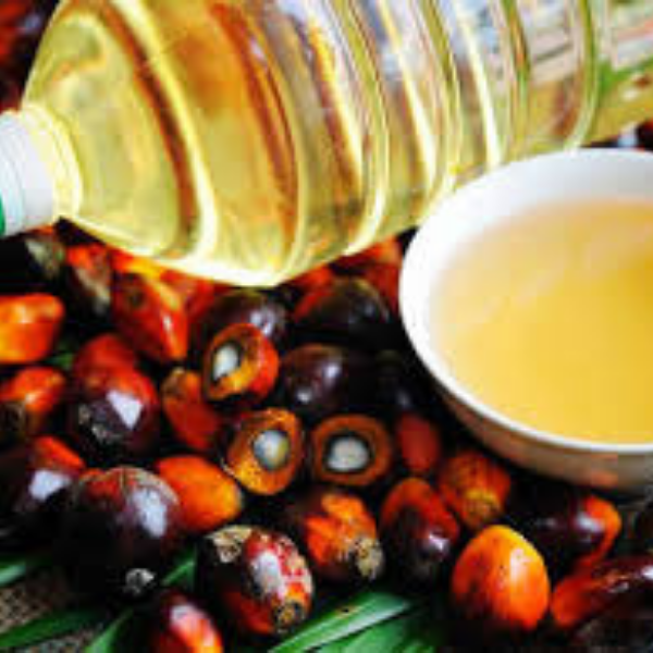 the globalisation of palm oil