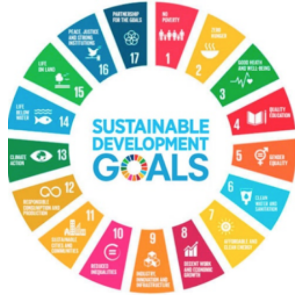palm oil 17 sustainability development goals