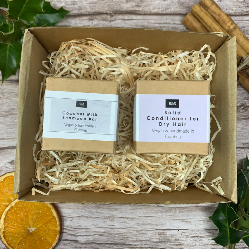Shampoo and Conditioner Bar Gift Set