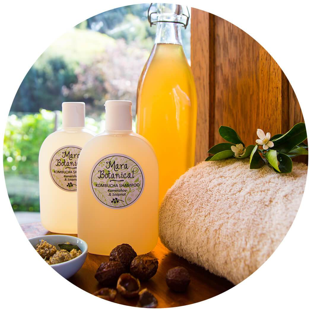 Natural Shampoo made in New Zealand with Kombucha, Kumerahou and Soapnut
