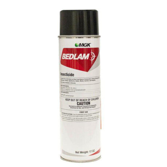 Bedlam-foam-Bug Clinic