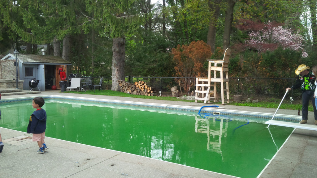 opening the pool in spring before big renovation - Dave's Backyard reno DIY