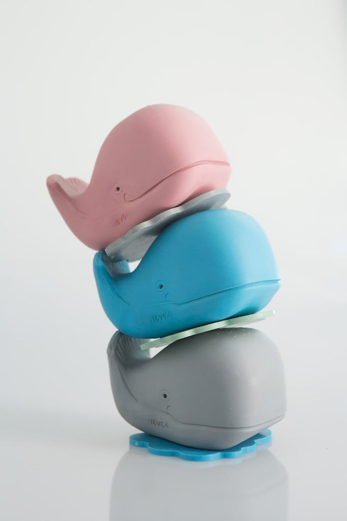 Harald The Whale Bath Toy | PRE-ORDER